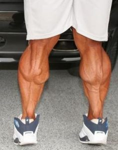 exercice muscu mollet