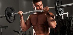 meilleur exercice biceps