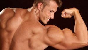 meilleur exercice pour les biceps