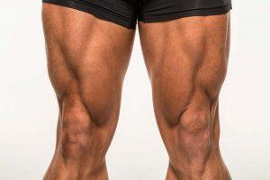 musculation quadriceps