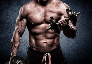 programme musculation avec machine